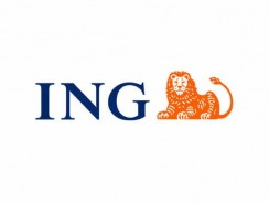 ING Direct Business